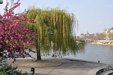 Jardin des sculptures en plein-air.